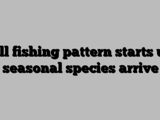 Fall fishing pattern starts up, seasonal species arrive
