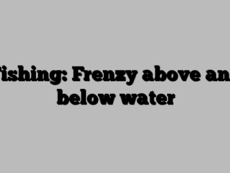 Fishing: Frenzy above and below water