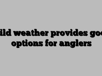 Mild weather provides good options for anglers