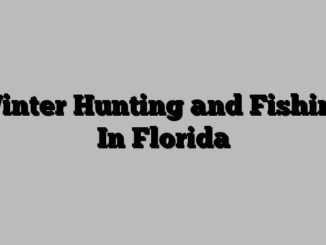 Winter Hunting and Fishing In Florida