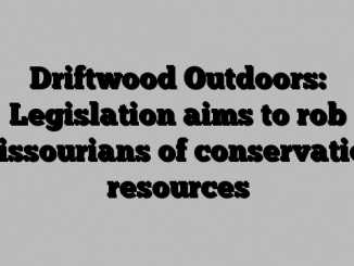 Driftwood Outdoors: Legislation aims to rob Missourians of conservation resources