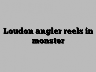 Loudon angler reels in monster