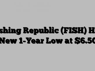 Fishing Republic (FISH) Hits New 1-Year Low at $6.50
