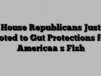 House Republicans Just Voted to Gut Protections for Americaa s Fish