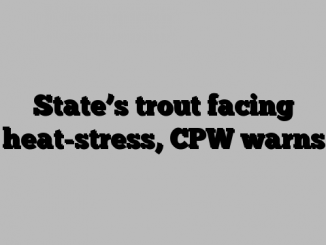 State's trout facing heat-stress, CPW warns