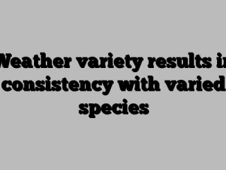 Weather variety results in consistency with varied species