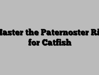Master the Paternoster Rig for Catfish