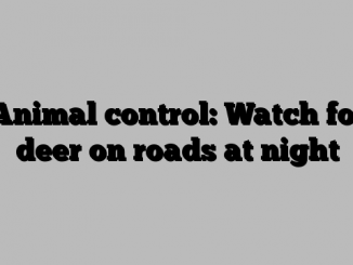 Animal control: Watch for deer on roads at night