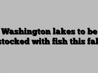 Washington lakes to be stocked with fish this fall