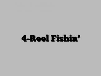 4-Reel Fishin'