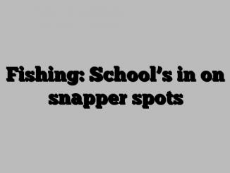 Fishing: School's in on snapper spots