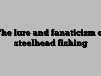 The lure and fanaticism of steelhead fishing