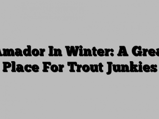 Amador In Winter: A Great Place For Trout Junkies